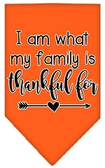 I Am What My Family is Thankful For Screen Print Bandana Orange Small