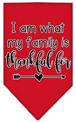 I Am What My Family is Thankful For Screen Print Bandana Red Small