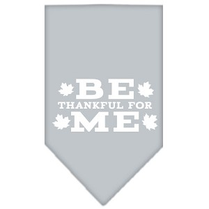 Be Thankful for Me Screen Print Bandana Grey Small
