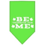 Be Thankful for Me Screen Print Bandana Lime Green Small