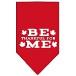 Be Thankful for Me Screen Print Bandana Red Small