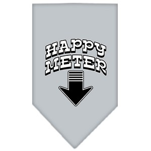 Happy Meter Screen Print Bandana Grey Small