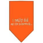 I really did eat the Homework Screen Print Bandana Orange Small