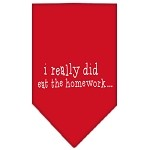 I really did eat the Homework Screen Print Bandana Red Small