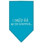 I really did eat the Homework Screen Print Bandana Turquoise Small