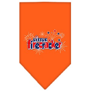 Little Firecracker Screen Print Bandana Orange Large