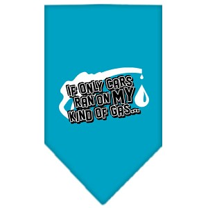 My Kind Of Gas Screen Print Bandana Turquoise Large