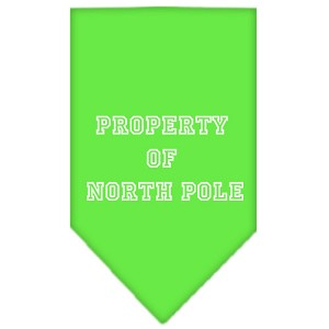 Property of North Pole Screen Print Bandana Lime Green Small