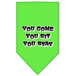 You Come, You Sit, You Stay Screen Print Bandana Lime Green Small