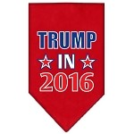Trump in 2016 Election Screenprint Bandanas Red Small
