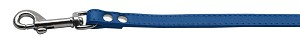 Fashionable Leather Leash Blue 3/4'' Wide