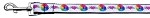 Technicolor Love Nylon Ribbon Dog Collars 1 wide 4ft Leash