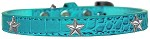 Silver Star Widget Croc Dog Collar Turquoise Size 16