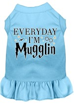 Everyday I'm Mugglin Screen Print Dog Dress Baby Blue Med (12)
