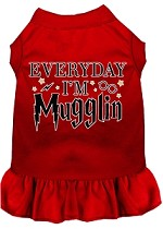 Everyday I'm Mugglin Screen Print Dog Dress Red XS (8)