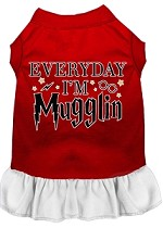 Everyday I'm Mugglin Screen Print Dog Dress Red with White XS (8)