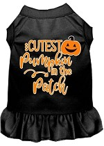 Cutest Pumpkin in the Patch Screen Print Dog Dress Black XS