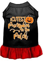 Cutest Pumpkin in the Patch Screen Print Dog Dress Black with Red XS