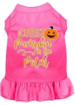 Cutest Pumpkin in the Patch Screen Print Dog Dress Bright Pink XS