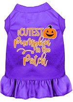 Cutest Pumpkin in the Patch Screen Print Dog Dress Purple XS