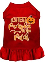 Cutest Pumpkin in the Patch Screen Print Dog Dress Red XS