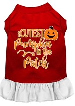 Cutest Pumpkin in the Patch Screen Print Dog Dress Red with White XS