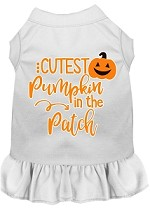 Cutest Pumpkin in the Patch Screen Print Dog Dress White XS