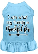 I Am What My Family is Thankful For Screen Print Dog Dress Baby Blue XS