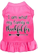 I Am What My Family is Thankful For Screen Print Dog Dress Bright Pink XS
