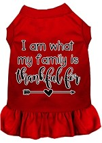 I Am What My Family is Thankful For Screen Print Dog Dress Red XS