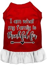 I Am What My Family is Thankful For Screen Print Dog Dress Red with White XS