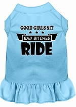 Bitches Ride Screen Print Dog Dress Baby Blue XS (8)
