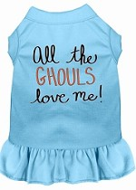All the Ghouls Screen Print Dog Dress Baby Blue XS