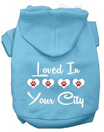 Loved In Washington D.C. Screen Print Souvenir Dog Hoodie Baby Blue XS