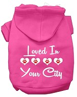 Loved In Washington D.C. Screen Print Souvenir Dog Hoodie Bright Pink XS