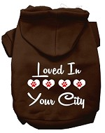 Loved In Washington D.C. Screen Print Souvenir Dog Hoodie Brown MD