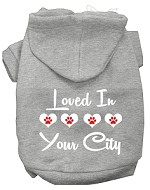 Loved In Washington D.C. Screen Print Souvenir Dog Hoodie Grey MD