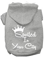 Spoiled In San Diego Screen Print Souvenir Dog Hoodie Grey XXL