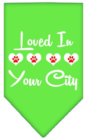 Loved in Washington D.C. Screen Print Souvenir Pet Bandana Lime Green Small