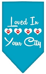 Loved in Washington D.C. Screen Print Souvenir Pet Bandana Turquoise Small