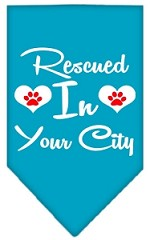 Rescued in Washington D.C. Screen Print Souvenir Pet Bandana Turquoise Small