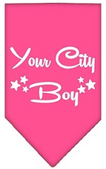 Washington D.C. Boy Screen Print Souvenir Pet Bandana Bright Pink Small