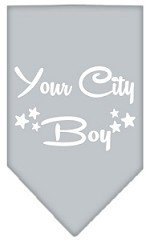 Washington D.C. Boy Screen Print Souvenir Pet Bandana Grey Small