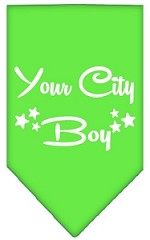 Washington D.C. Boy Screen Print Souvenir Pet Bandana Lime Green Small
