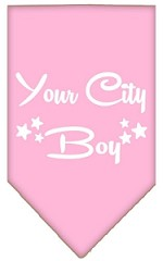 Washington D.C. Boy Screen Print Souvenir Pet Bandana Light Pink Small
