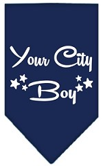 Washington D.C. Boy Screen Print Souvenir Pet Bandana Navy Blue Small