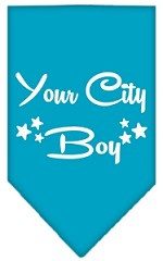 Washington D.C. Boy Screen Print Souvenir Pet Bandana Turquoise Small