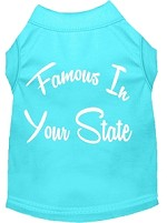Famous in Arkansas Screen Print Souvenir Dog Shirt Aqua XS
