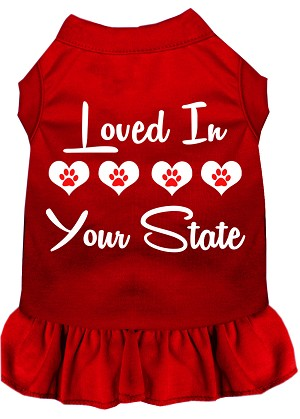 Loved in Iowa Screen Print Souvenir Dog Dress Red 4X