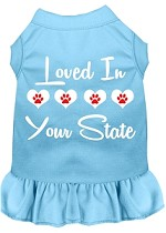 Loved in Alaska Screen Print Souvenir Dog Dress Baby Blue XS